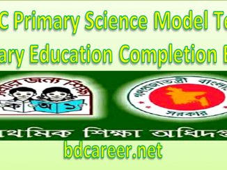 Primary Science Model Test 2019